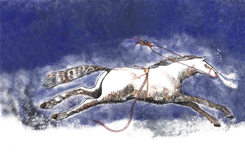 Paard uit Marco Christoffel