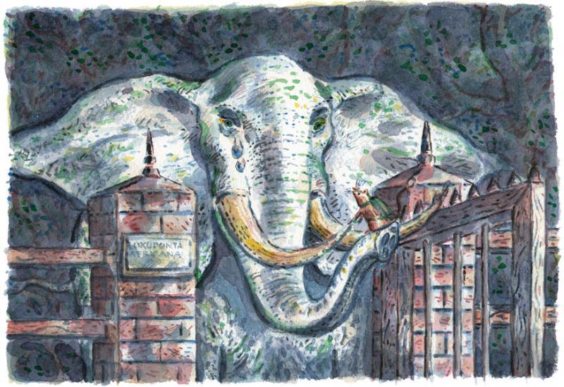 Marco Christoffel - olifant